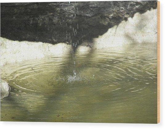 Little Waterfall Wood Print by Anna Stearman