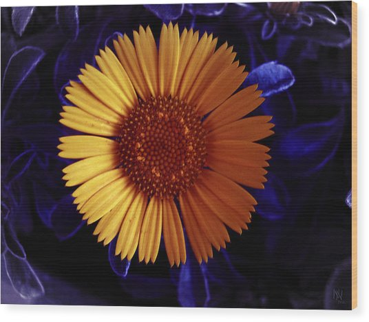 Little Yellow Flower Wood Print by Nafets Nuarb