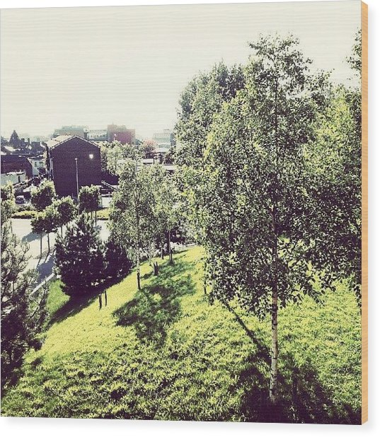 #liverpool #uk #england #green #tree Wood Print