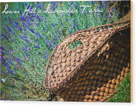 Loess Hills Lavender Wood Print by Elizabeth Gingerich