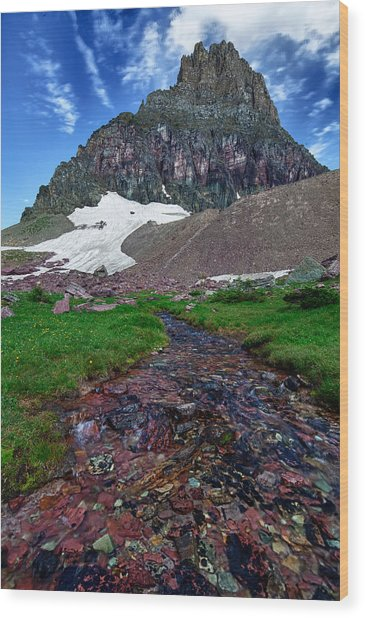 Logan Pass View Wood Print