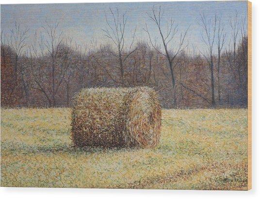 Lone Haybale Wood Print by Patsy Sharpe