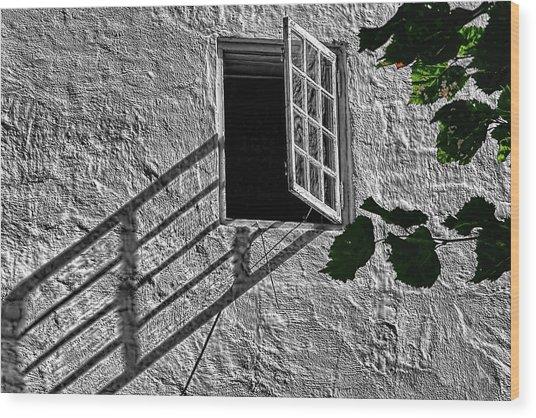 Lone Window Wood Print