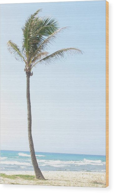 Lonely Palm Wood Print