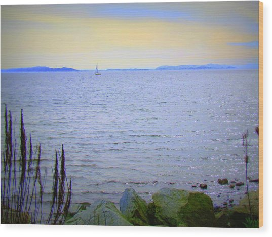 Lonely Sailboat II Wood Print