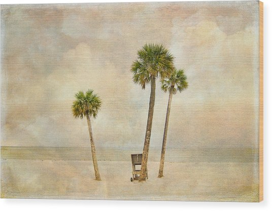 Lonely Shores Wood Print by Stephen Warren