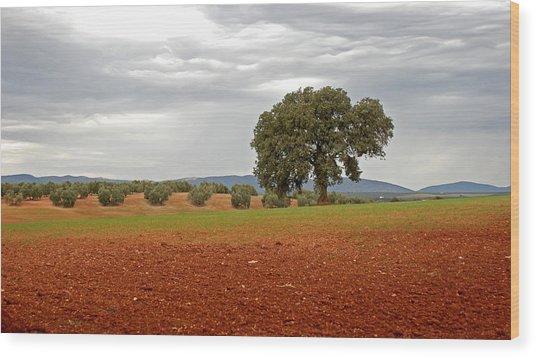 Lonely Tree Wood Print by Perry Van Munster