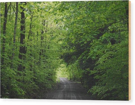 Long Lost Road Wood Print by April  Robert