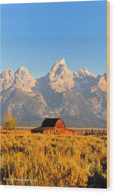 Lonley Barn Wood Print by Rusty Enderle