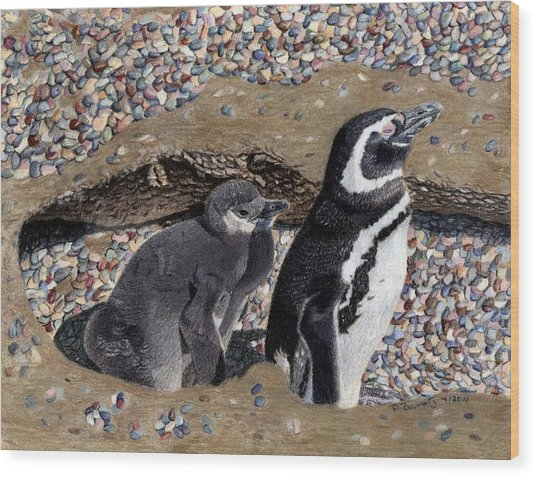 Looking Out For You - Penguins Wood Print