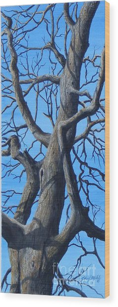 Looking Up   Sold Wood Print