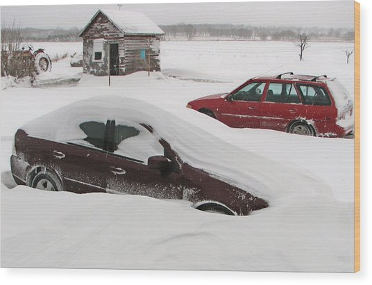 Looks Like We Had Snow Last Night Wood Print by Victoria Sheldon
