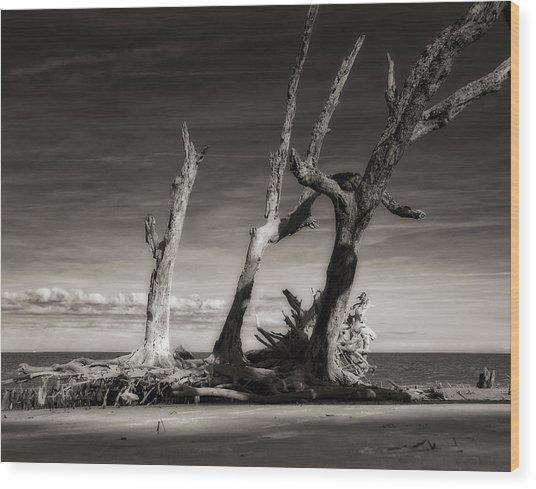Lost World Wood Print