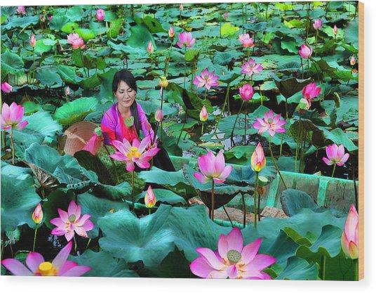Lotus Season Wood Print