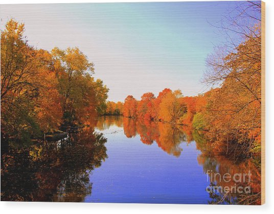 Love The Fall Wood Print