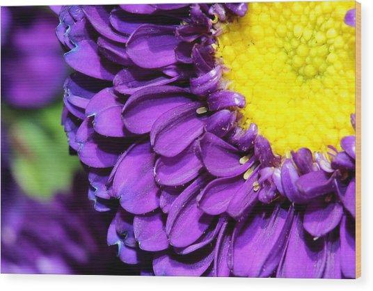 Love The Purple Flower Wood Print