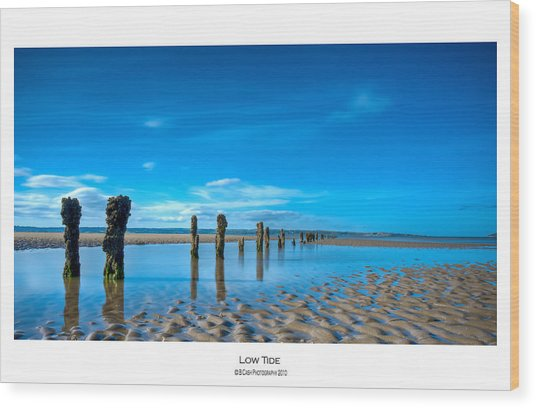 Low Tide Wood Print