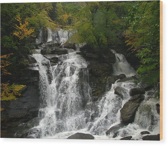 Lower Kaaterskill Falls Ny U S A  1867 Wood Print by J D  Whaley