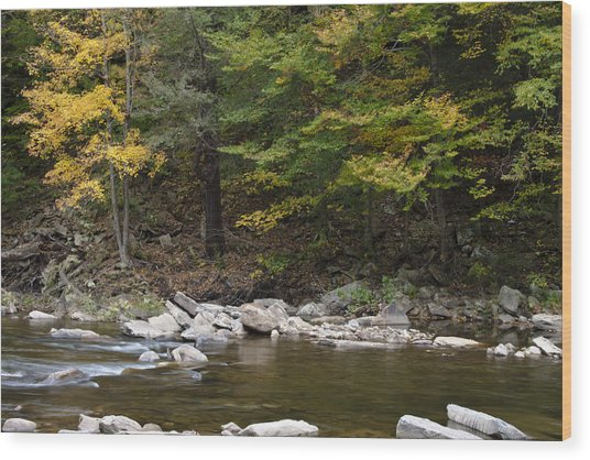 Loyalsock Creek Flowing Gently Wood Print