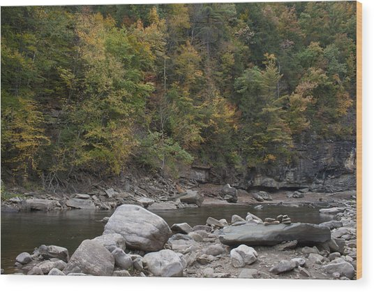 Loyalsock Creek Worlds End State Park Wood Print