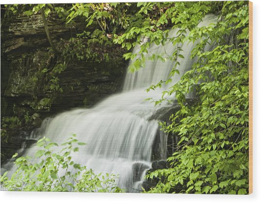 Loyalsock Waterfall Wood Print