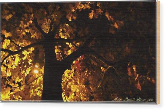 Luminous Deciduous Wood Print