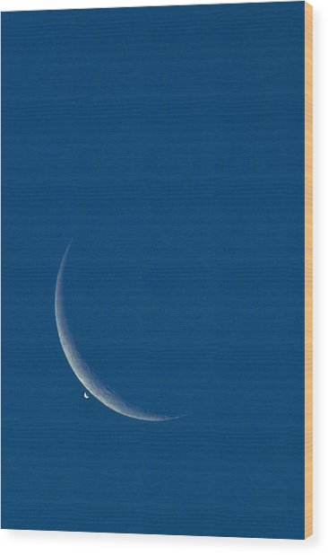 Lunar Occultation Of Venus by David Nunuk