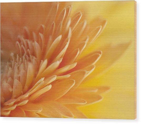 Macro Of Petals Wood Print
