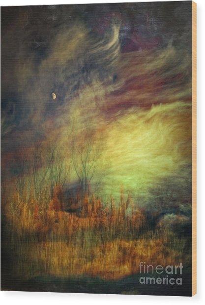 Magical Woods Wood Print by Emilio Lovisa