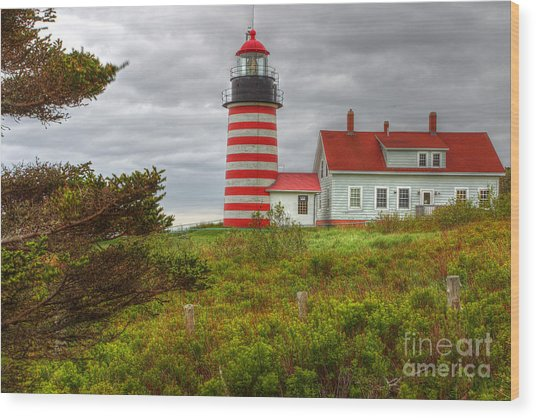 Maine Lighthouse At Lubec. Wood Print by Rick Mann