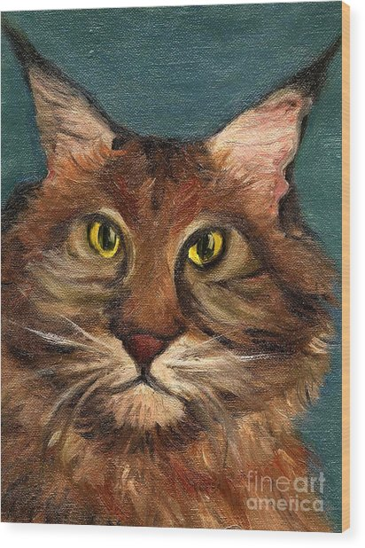 Mainecoon The Cat Wood Print by Kostas Koutsoukanidis