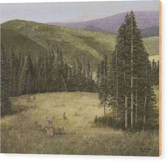 Majesty In The Rockies Wood Print