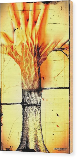 Man Suffers What Made Others Suffer Wood Print by Paulo Zerbato