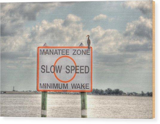 Manatee Zone Wood Print by Barry R Jones Jr