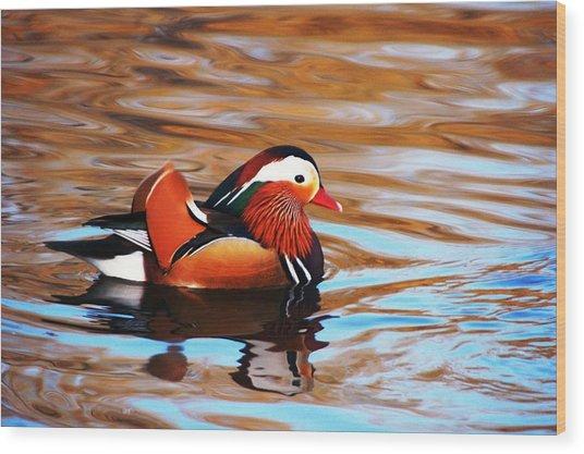 Mandarin Duck Wood Print by Juan  Cruz