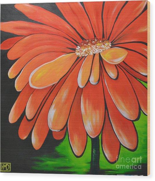 Mandarin Orange Wood Print by Holly Donohoe