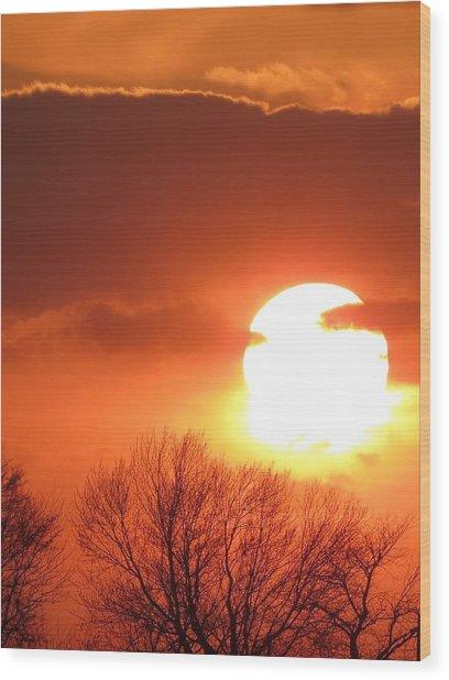 Mango Sunset Kansas Tree Silhouette Wood Print