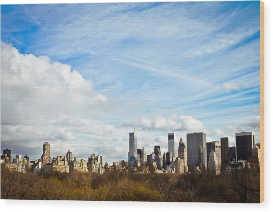 Manhattan Behing The Central Park Wood Print by Ezequiel Rodriguez Baudo