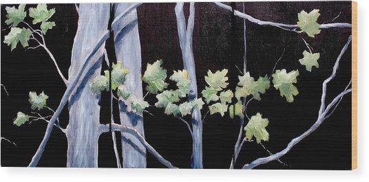 Maples In Moonlight Wood Print