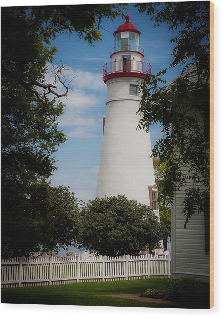 Marblehead Lighthouse Afternoon Wood Print by John Traveler