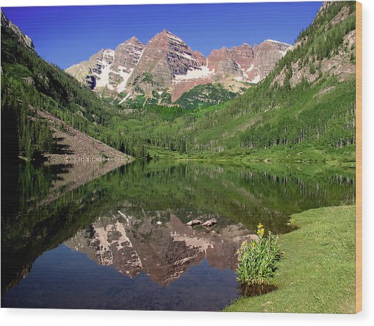 Maroon Bells Shoreline Wood Print