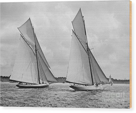 Mayflower And Galatea Start America's Cup 1886 Wood Print