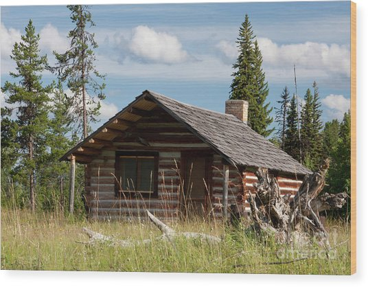 Mccarthy Homestead Wood Print