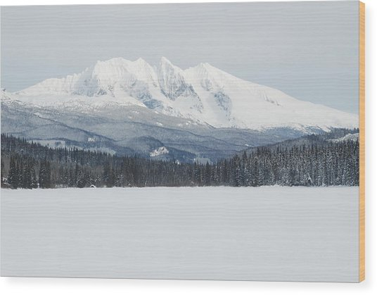 Mcdonnell Lake View Wood Print