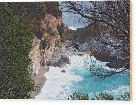 Mcway Falls In Spring Wood Print