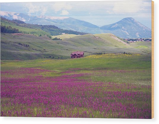 Meadow Wood Print