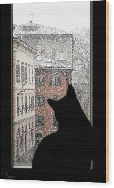 Melancholy Wood Print