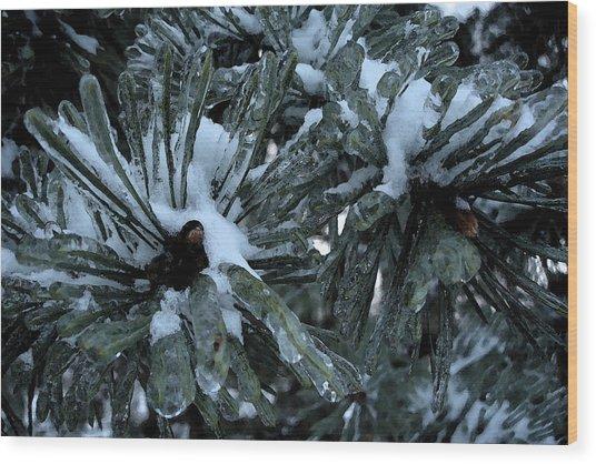 Memories In Ice Wood Print by Yvonne Scott