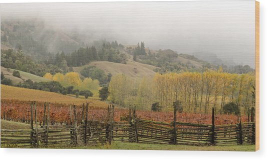 Mendocino In Autumn Wood Print by Denice Breaux