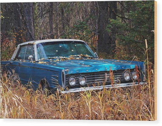 Wood Print featuring the photograph Mercury by Trever Miller